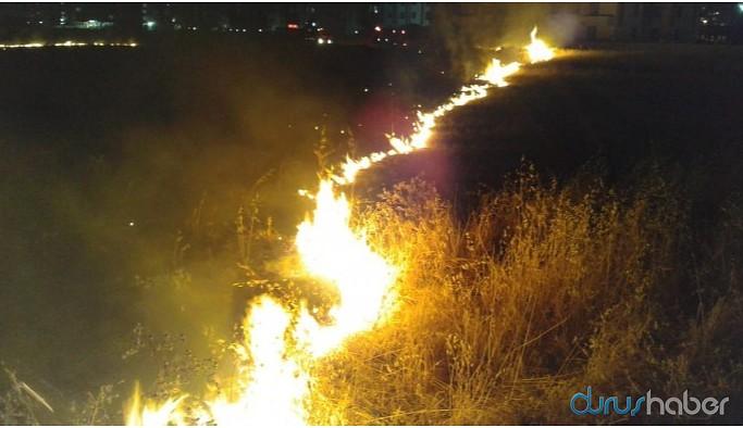 Newroz Parkı yakınlarında anız yangını çıktı