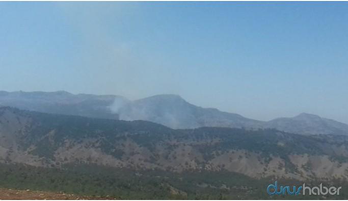 Besta'daki yangına 3 gündür müdahale edilmiyor