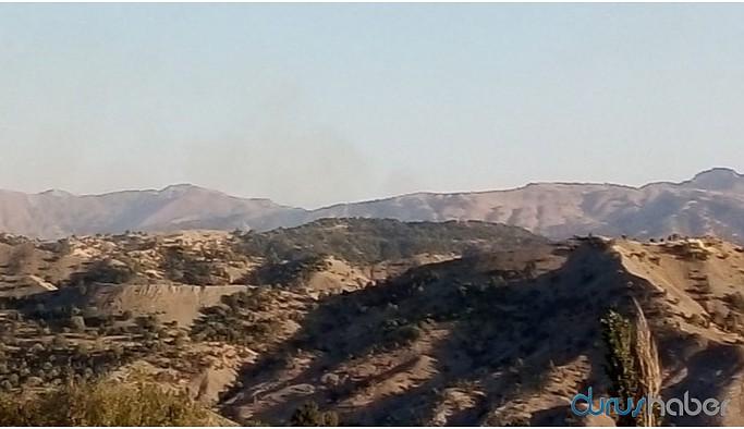 Cudi'de orman yangını