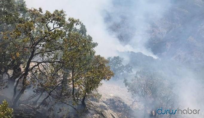 Cudi'deki yangına yetkililerden yanıt: Bizi meşgul etmeyin