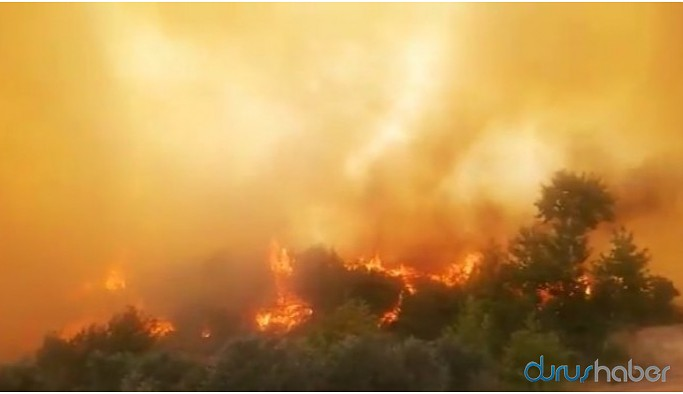 Samandağ'daki yangın kontrol altına alındı