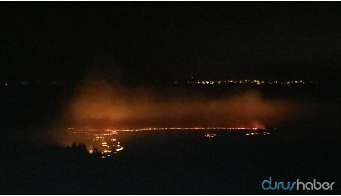 Anız yangını Hevsel Bahçeleri'ne sıçramadan söndürüldü