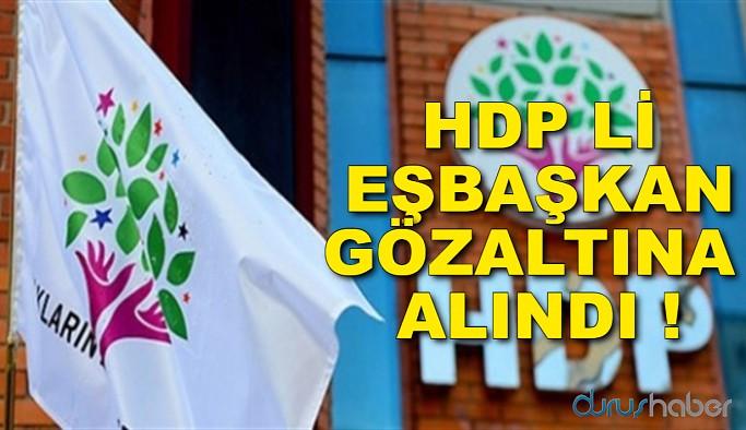 HDP Li Eşbaşkan Gözaltına Alındı
