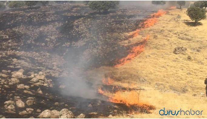 Yangın çıkan köylerde valiliğin izniyle giriş yapılıyor