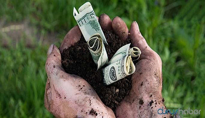 Ekonomistler: Merkez Bankası sorunu tek başına çözemez, tarımda reform şart