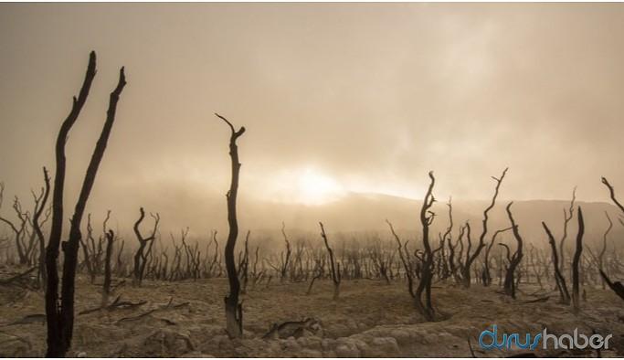 Gürsucu: Paris Anlaşması iklim krizine çözüm değil