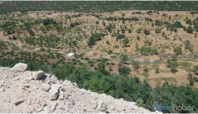 Maden faaliyeti bağ ve bahçeleri kuruttu