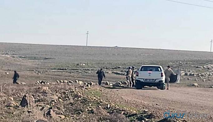 Otlatma yasağı: Asker zoruyla hayvanlar toplanıyor, sahiplerine ceza makbuzu kesiliyor