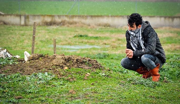 27 yıllık can yoldaşı 'Cınavır'ı mezarında da yalnız bırakmadı: Her gün mezarı başında gözyaşı döküyor