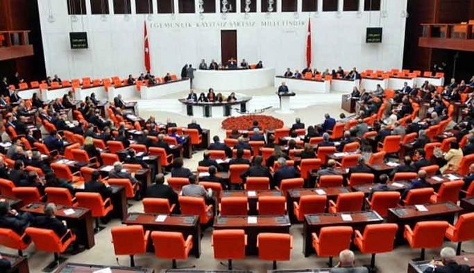 Türkiye'deki 25 milyon Kürt'ün diline Meclis'te 'Bilinmeyen bir dil' denildi, tutanaklara 'X' diye geçti