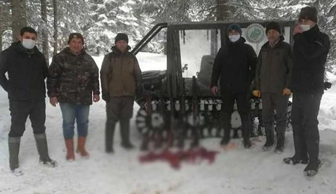 Koruma altındaki karacayı vuran 7 kişiye para cezası