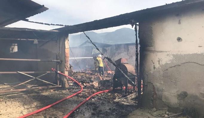 İzmir'de hayvan çiftliğinde yangın