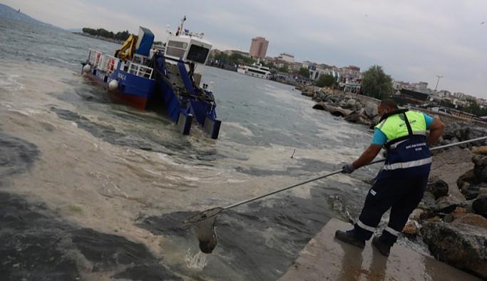 Kartal Belediyesi ve İBB deniz salyasına karşı çalışıyor: Tekrar olmayacağı anlamına gelmiyor