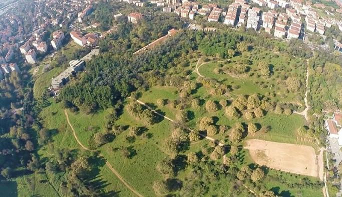 Validebağ Korusu'na yapılmak istenen millet bahçesi için korunması gereken kuş ve ağaç türü az gösterilmiş