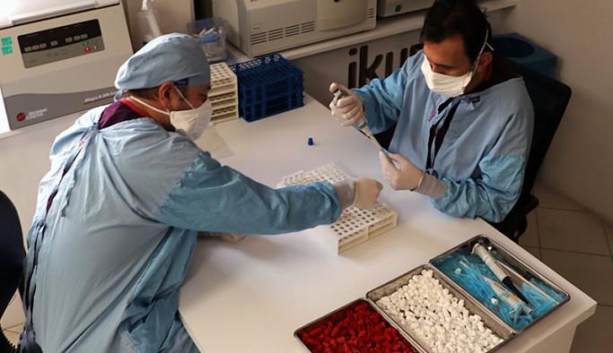 Yerli aşının Faz-3 aşamasında 'plasebo' yerine 'Sinovac' kullanılacak
