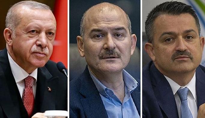 Çıkan yangınların ardından Erdoğan, Soylu ve Pakdemirli hakkında suç duyurusu