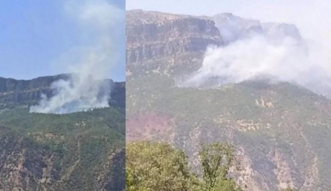 Siirt'in 2 ilçesinde orman yangını