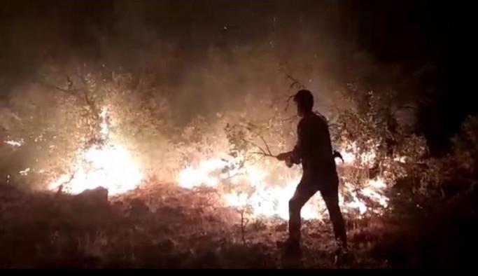 Lice'deki yangını yurttaşlar kendi çabalarıyla söndürdü
