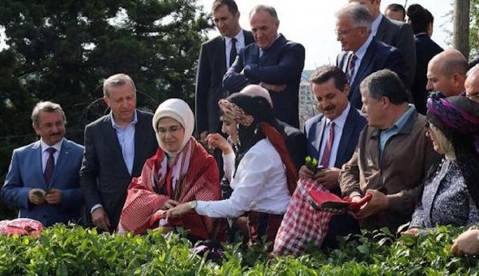 Cemil Çiçek'ten yargıçlara eleştiri: Çay toplamaya, zeytin toplamaya bile gidiyorlar