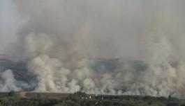 UNESCO Dünya Kültür Mirası Listesi'nde yer alan Hevsel Bahçeleri'nde korkutan yangın