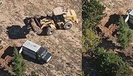 AKP'li belediye onlarca köpeği diri diri toprağa gömdürdü