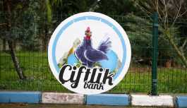 Çiftlik Bank, yuva da yıkıyor: 3 kadın, eşlerine boşanma davası açtı