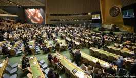Almanya BM Güvenlik Konseyi'nin geçici üyeliğine seçildi
