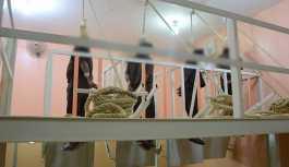 Irak'ta 13 cihatçı asılarak idam edildi