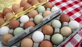 Yumurtanın fiyatı 1 senede yüzde 87 arttı, üretici mutsuz