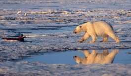 Arktik karbon döngüsü hızlanıyor