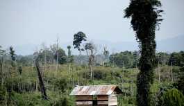 Endonezya'da 15 yıl boyunca bir kadını seks kölesi yapan şaman tutuklandı