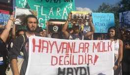 Büyükada'da fayton protestosu: Hayyvanlar özgür olmak istiyor