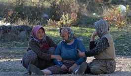 Uşak'ta feci kaza:1 ölü