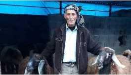 Adana'da bir çoban iki gündür kayıp