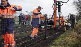 Danimarka, Almanya sınırına yaban domuzlarına karşı duvar örüyor