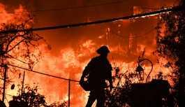 Kaliforniya'daki orman yangını 2018'in en maliyetli doğal afeti oldu