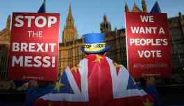 Eski İngiltere Dışişleri Bakanı'nın kız kardeşi Brexit karşıtlığı için canlı yayında soyundu