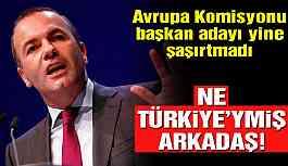 Alman siyasetçiden yine Türkiye eleştirisi