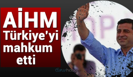AİHM Demirtaş başvurusunda Türkiye'yi mahkum etti
