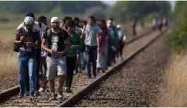 300 bin mülteci Avrupa'ya sığındı