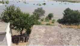 Ilısu Barajı'nda su tutma işlemi tehdit oluşturmaya başladı