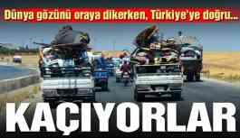 Kaçıyorlar.... Türkiye'ye doğru geliyorlar!