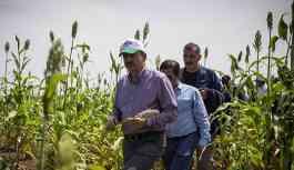 Türkiye'nin Sudan'da kiraladığı tarım arazileri 5 yıldır kullanılmıyor