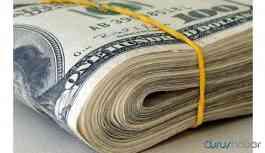 Dolar son iki ayın en yüksek seviyesini gördü
