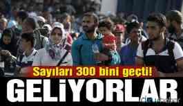 İdlib'den Türkiye sınırına gelenlerin sayısı 300 bini geçti