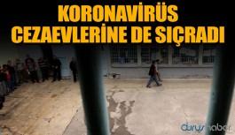 Adalet Bakanı Gül açıkladı: 3 mahkum koronavirüsten hayatını kaybetti