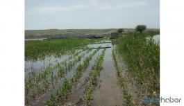Bugün açılışı yapılan baraj arazileri sular altında bıraktı!