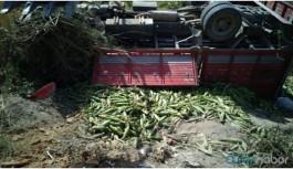 İneğe çarpan kamyon şarampole yuvarlandı: 2 ölü