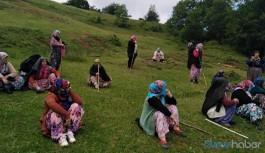 Yaşam alanlarını savunan köylülere gözaltı