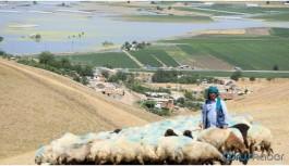 Barajın yarattığı felaket
